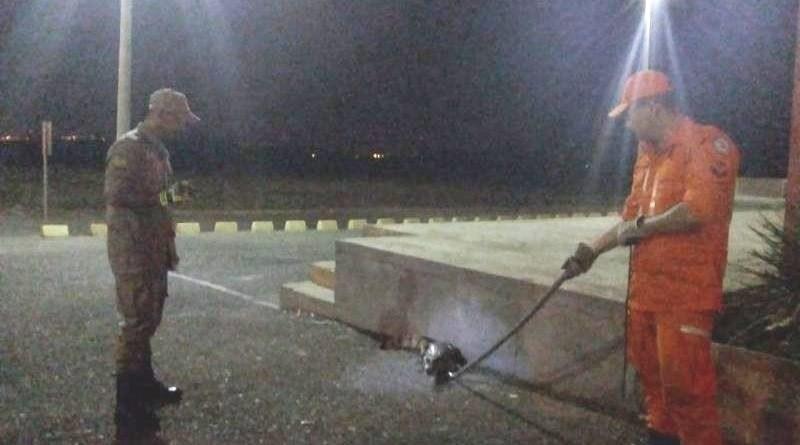 Bombeiros capturam jacaré em estacionamento de shopping no Piauí