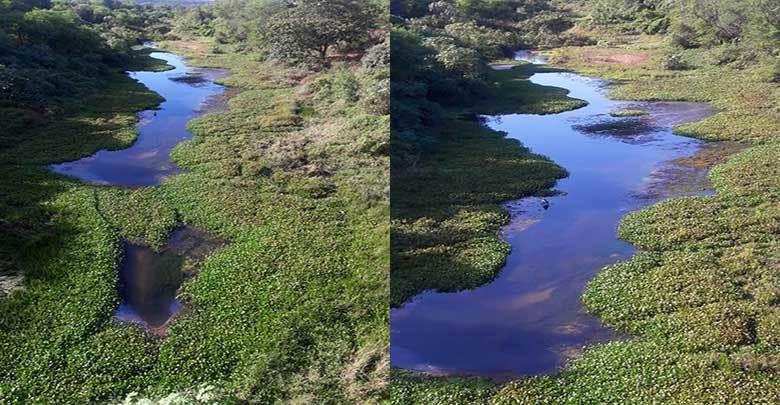 Baixa vazão de barragem pode secar rio no Piauí