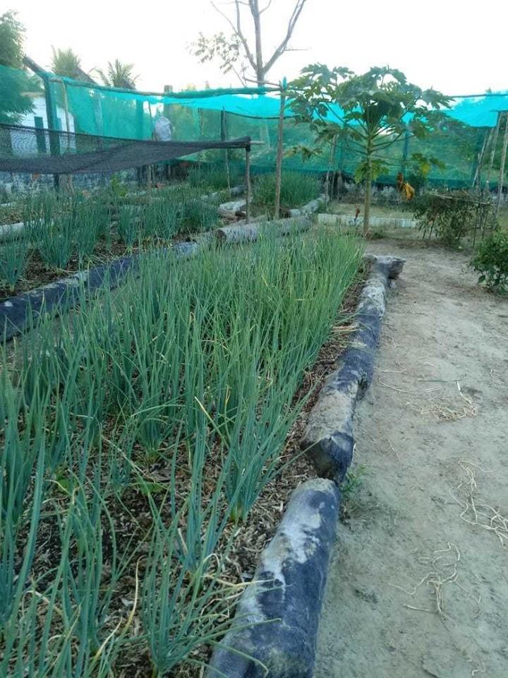 Governo de Barras PI entrega kit de irrigação para os alunos do Programa Projovem Campo no Assentamento Esperança