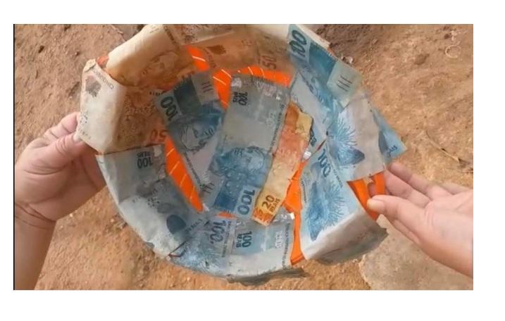 No Piauí, boi engole R$ 1.500 e dono abate animal para recuperar dinheiro