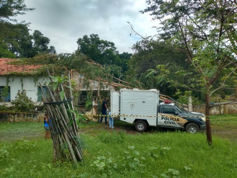 Árvore cai em cima de casa após forte chuva e mata mãe e dois filhos no MA