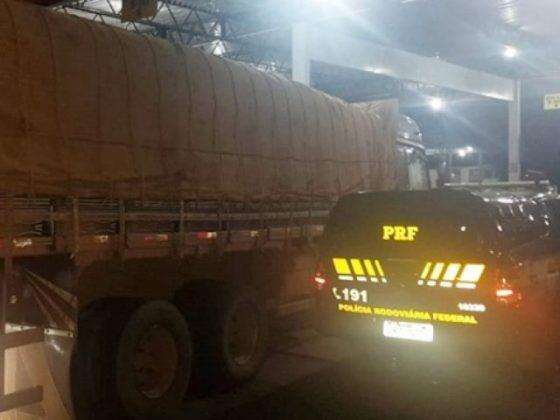 Polícia Rodoviária Federal apreende carga com 23 m³ de madeira ilegal na BR 230
