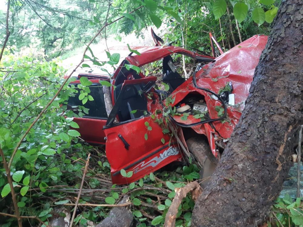 Veículo colide com árvore e homem e bebê de apenas 4 meses morrem