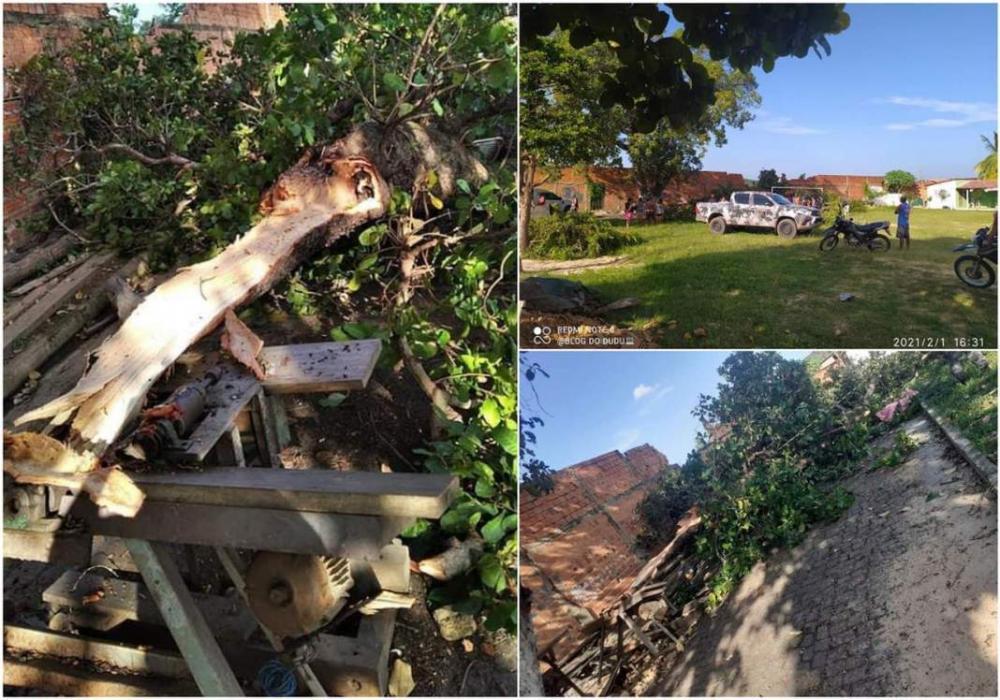 Mulher morre ao ser atingida por galho de árvore no Piauí