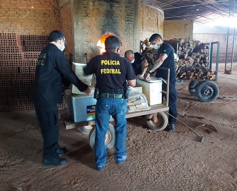 PF incinera carga de maconha e cocaína no Piauí