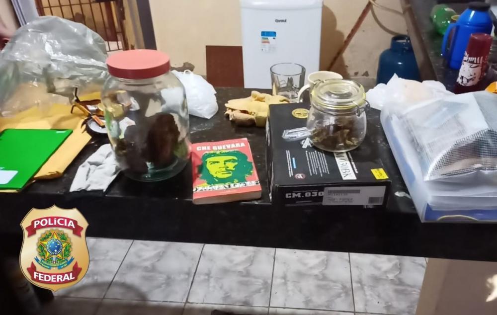 PF prende homem em flagrante em casa com esconderijo de drogas embaixo de frigobar