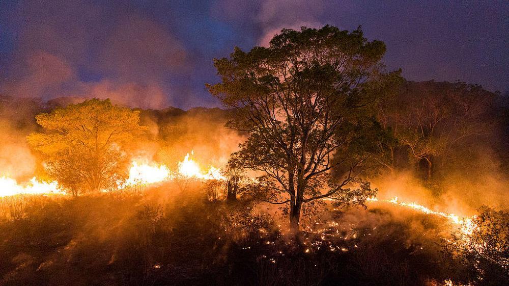 Governo proíbe queimadas em todo o Brasil por 4 meses