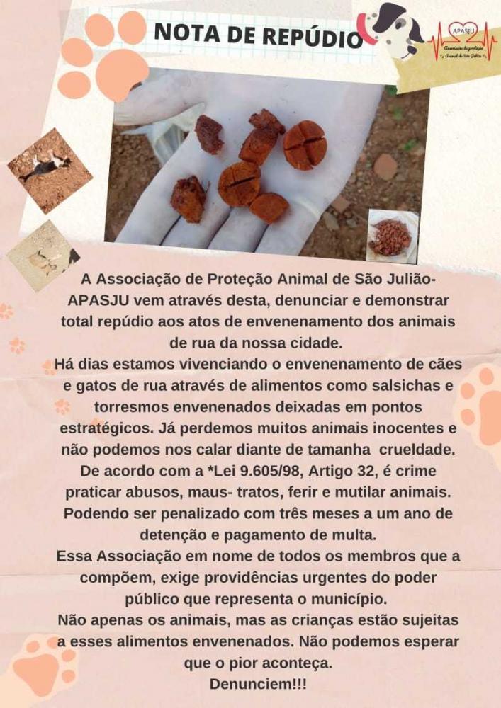 Vários cães e gatos são mortos por comida envenenada no interior do Piauí