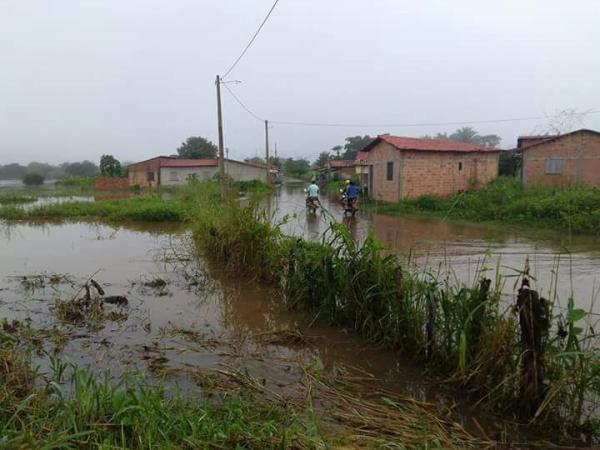 Defesa civil em Barras PI em alerta máxima na retirada dos moradores de bairros inundados