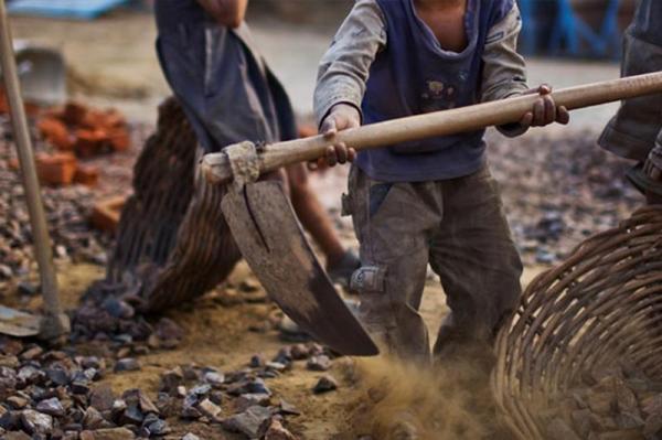 Sete crianças são vítimas de acidente de trabalho a cada 24 horas no Brasil