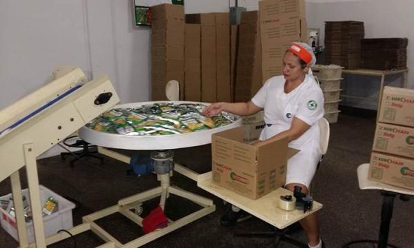 Indústrias do setor de alimentos são os que mais cresce no Piauí