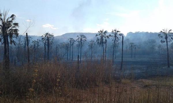 Incêndio florestal de grande proporção atinge serras e Corpo de Bombeiros faz alerta