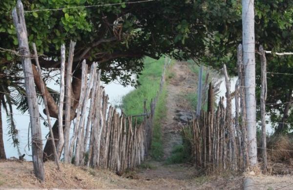 Duas crianças morrem eletrocutadas em Araioses-MA