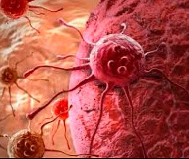 Dupla divide Nobel de Medicina por terapia contra o câncer