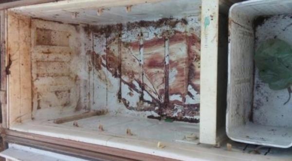 Suspeito de matar mulher e colocar corpo na geladeira é preso