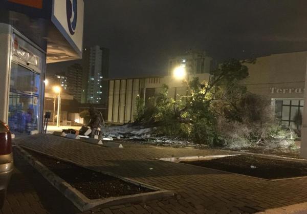 Ventos de 62 km/h derrubam árvores e placas e deixam parte de Teresina sem energia