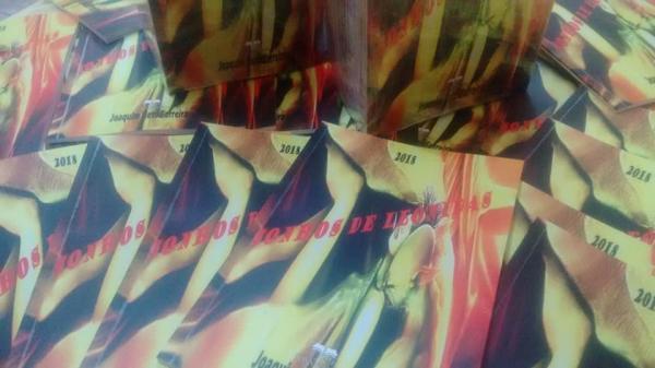 Novela Sonhos de Leônidas é o mais novo trabalho literário do escritor barrense Joaquim Neto Ferreira