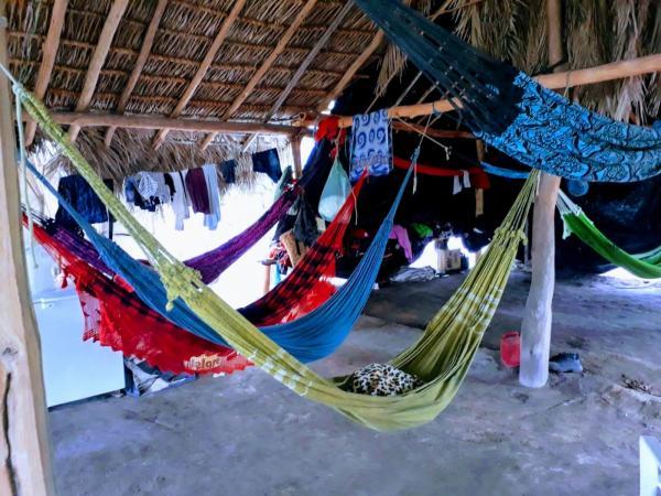 MTE resgata 54 trabalhadores em situação análoga à escrava no Piauí