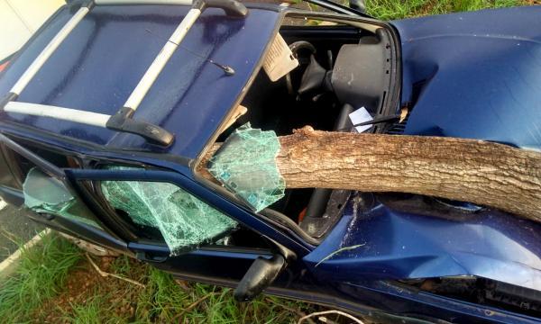 Acidente na PI Barras a Miguel Alves deixa motorista ferido; vídeo.