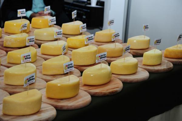 Conheça os benefícios do queijo para a saúde