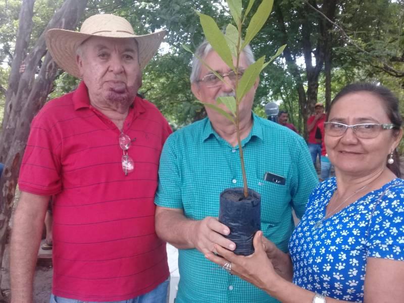 Prefeitura de Barras contempla produtores com milhares de mudas frutíferas