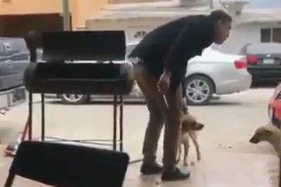 Homem finge carinho e surpreende cão com uma facada; Xuxa exclama: 'Monstro'