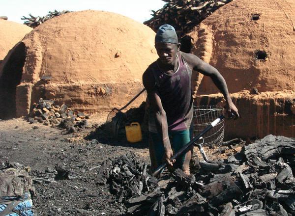 Piauí ocupa 12º no ranking do trabalho escravo no país